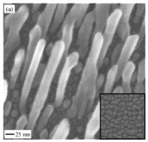 Fig. 3. Scanning electron microscope image of well separated Cu nanorods. Cour- tesy of X. Niu, et al., Phys. Rev. Lett., Vol 110, 136102, 2013.