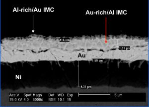 ■ Figure 4: Cross Section of Failed Al Wirebond Foot Showing IMC Phase at 5000x. Note extensive voiding between Au plating and Au-rich IMC phase. (CMC Laboratories, Inc)